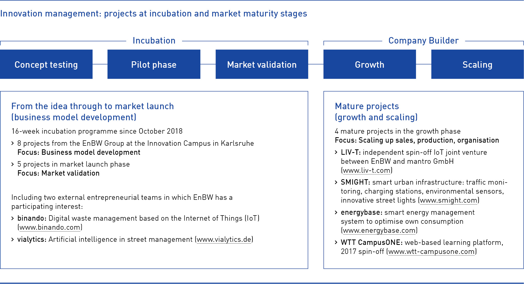 Innovation management_projects at incubation and market maturity stages