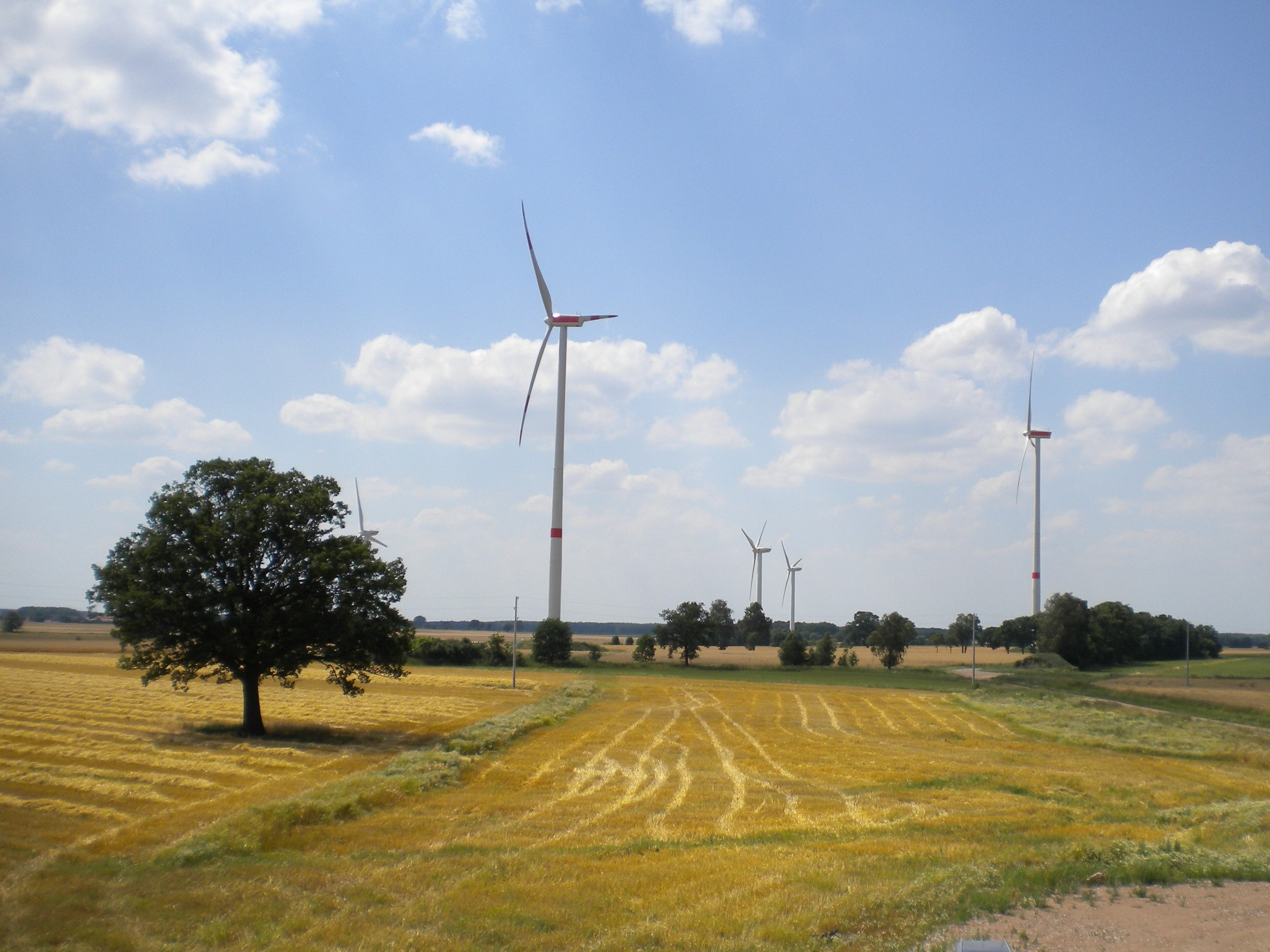 Windpark Görike