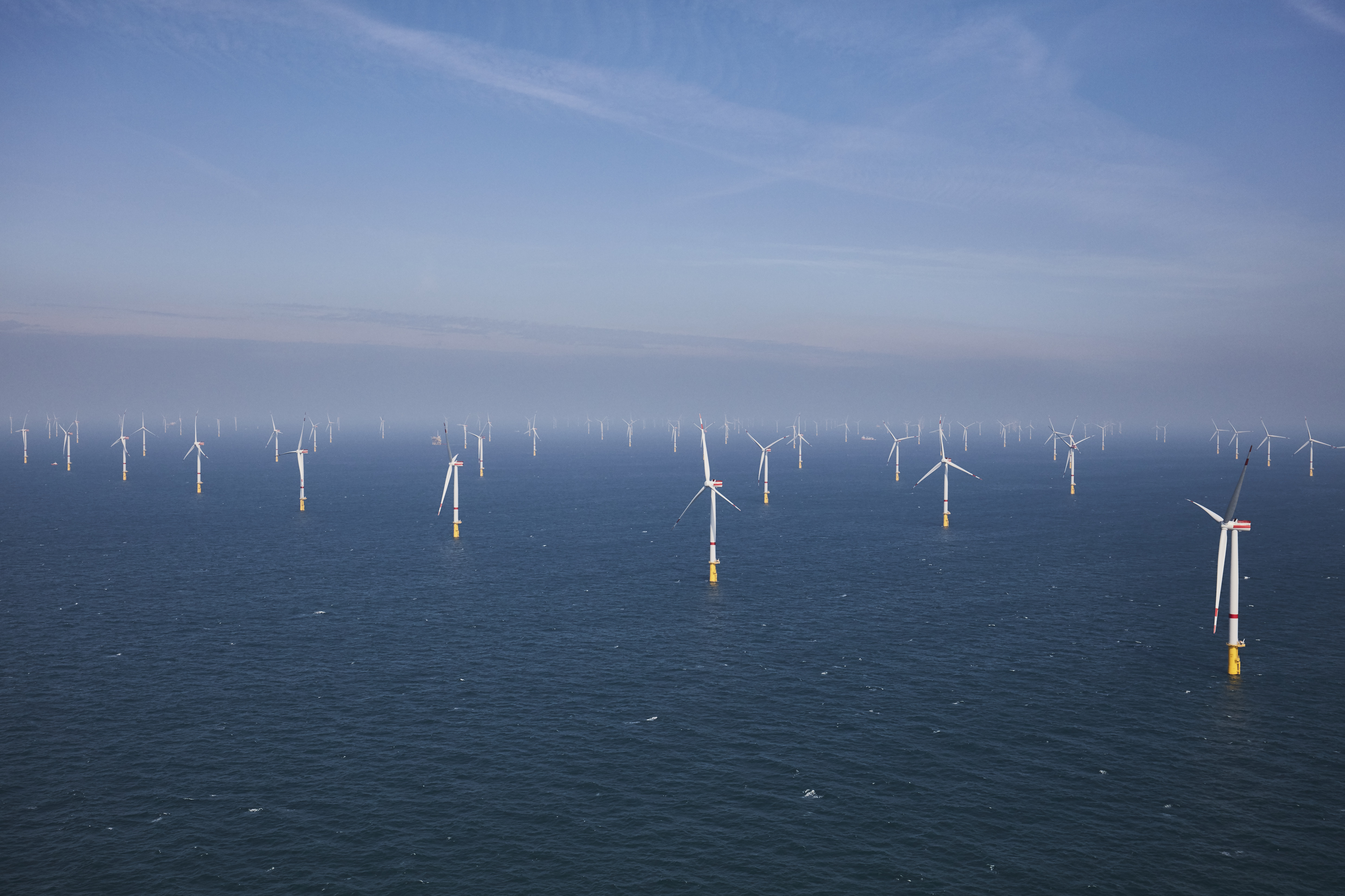 EnBW Offshore-Windpark Hohe See mit Albatros (Foto: EnBW)